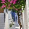Thumbnail image for Paros – idyllistä Kreikan lomaa aidossa ympäristössä