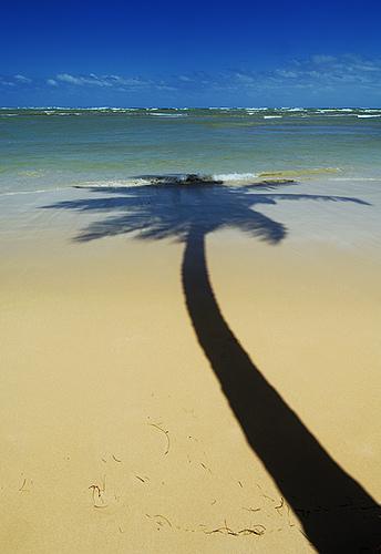Bahia de Samana Dominikaaninen tasavalta matkat source: http://www.flickr.com/photos/11021529@N08/2792856639/